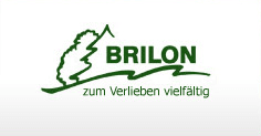 logo-Brilon